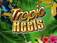 Классический игровой автомат Tropic Reels