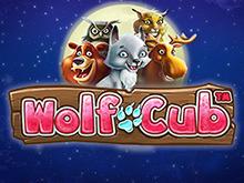 Азартный досуг с игровым автоматом Wolf Cub