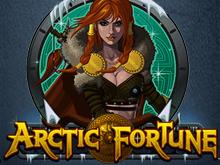 В онлайн казино Вулкан Старс бесплатно слот Arctic Fortune