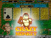 Популярная азартная игра онлайн Crazy Monkey
