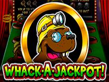 Игровой автомат Whack A Jackpot на сайте казино